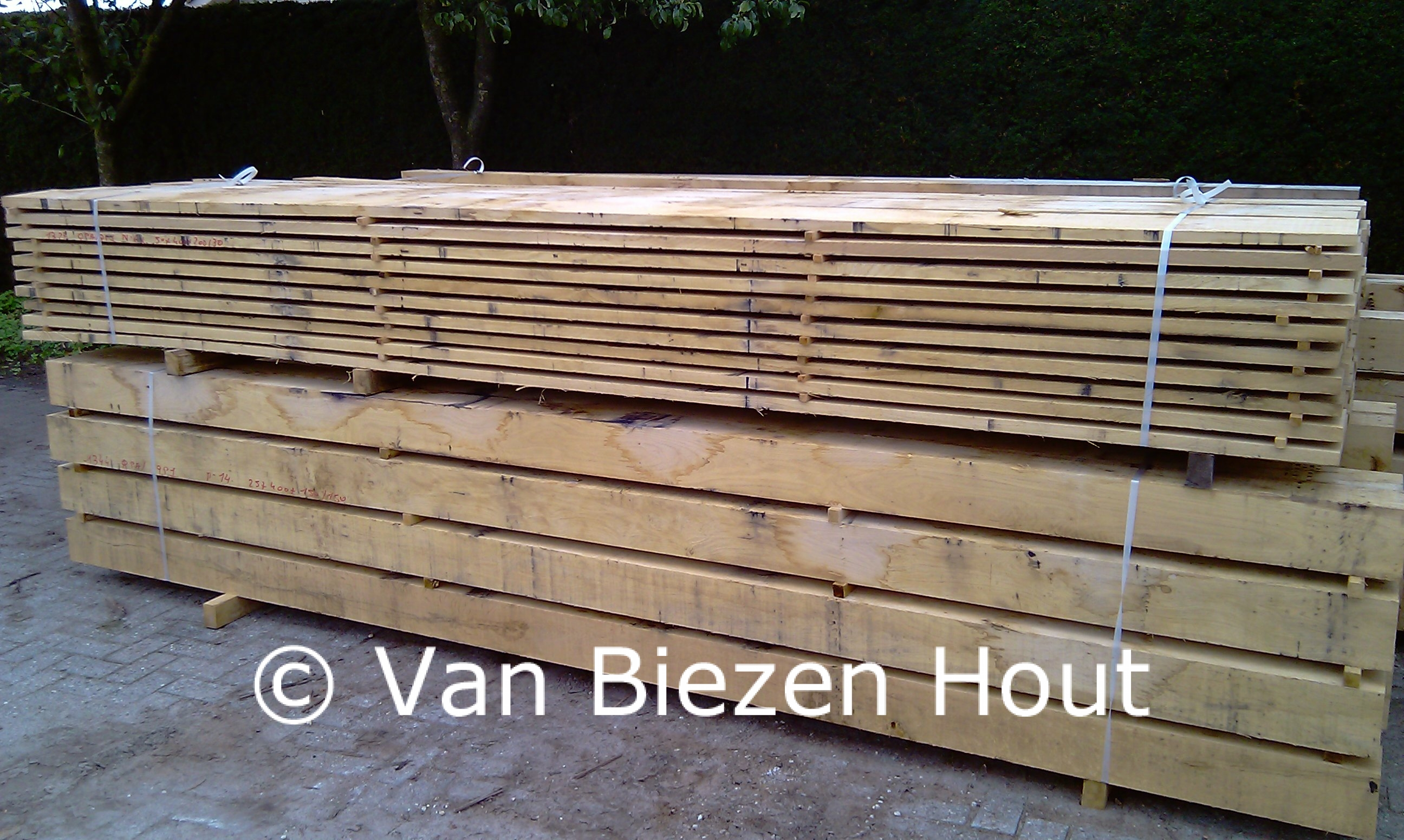 Eiken planken te koop van biezen eikenhout